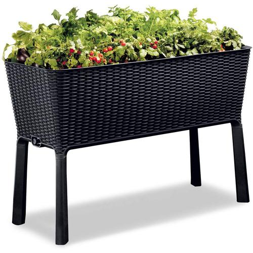Keter - Easy Growing  Garden Box