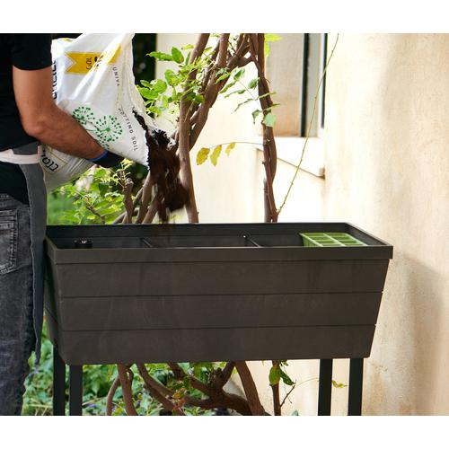 Keter - Urban Bloomer Garden Box