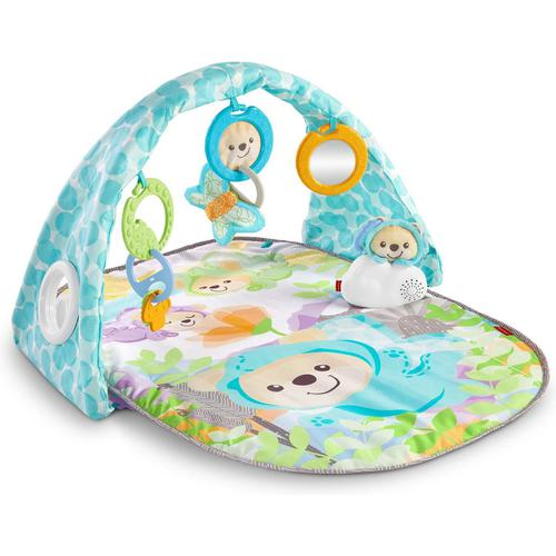 Fisher-Price DYW46 - Butterfly Dreams Musical Playtime Gym