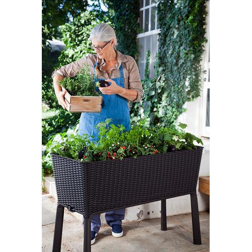 Keter - Easy Growing  Garden Box